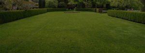 Houston lawn and landscape service