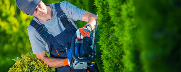 Houston commercial landscape maintenance companies