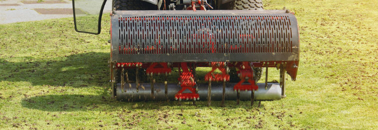 Lawn Aeration Services in Houston