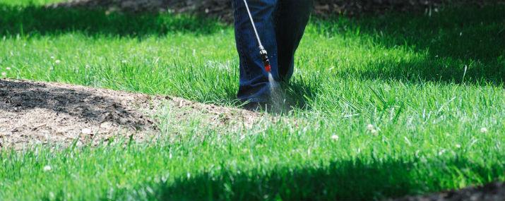 post-emergent herbicide for crabgrass