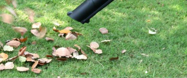 Using a Lawn Vacuum to Clean Up Acorns from Yard