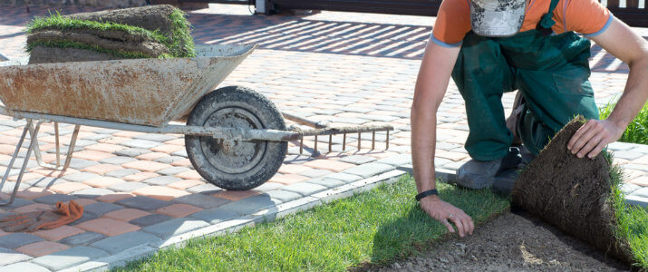 Houston sod installation prices