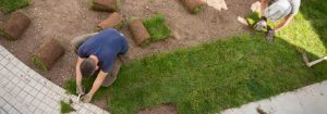 Sod Installation in Houston