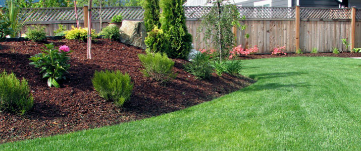 how often should you mulch your lawn in Houston Texas