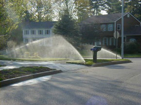 A Sprinkler Head Throws Across the Sidewalk