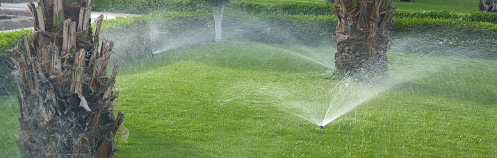 Sprinkler System Repair Services in Houston