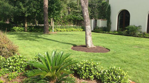 Landscaping and Lawn Care Contractor in Bellaire, TX