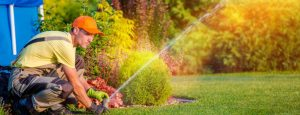 Sprinkler System Repair at The Woodlands, Texas
