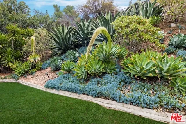 Mid-century Landscaping Design Idea Picture