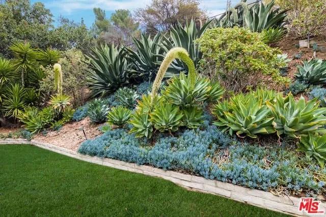 Mid-century Landscaping Design