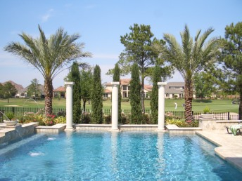 Texas Landscaping Design Idea Picture - Pool